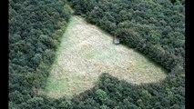 L'homme a planté 6000 arbres en mémoire de sa femme. Mais 17 ans plus tard? Il révèle enfin son énorme secret!