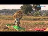 Video IFC က ဖူ(လ)လာတန္ ျမန္မာေငြေၾကးလုပ္ငန္းမွာ ကန္ေဒၚလာ ၁.၂ သန္းရွယ္ယာထည့္၀င္