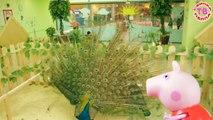 Enfants pour et dessins animés dessins animés sur russe Peppa Pig Zoo
