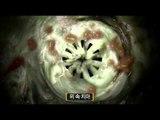 EBS 다큐프라임 - EBS Docuprime_바퀴 1부_인간의 동굴 바퀴의 도시_#002