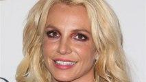 Britney Spears' Sons Feed Elephants