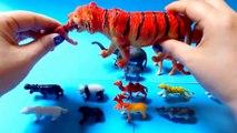 Et animaux bébés enfants pour enfants Apprendre apprentissage des noms des sons sauvage |