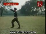 Martial Arts - Shaolin Kung Fu - Eagle Claw Style