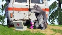 Et ours le le le le la Macha et lours tous Série 1 Série 5 Masha