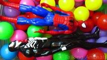 Balle des voitures des œufs amusement amusement fosse homme araignée étoile venin contre guerres avec Surprise kung fu panda disney 1