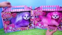 Et par par chat chien minou Nouveau chiot examen jouet jouets avec Surprise surprise surprise disney
