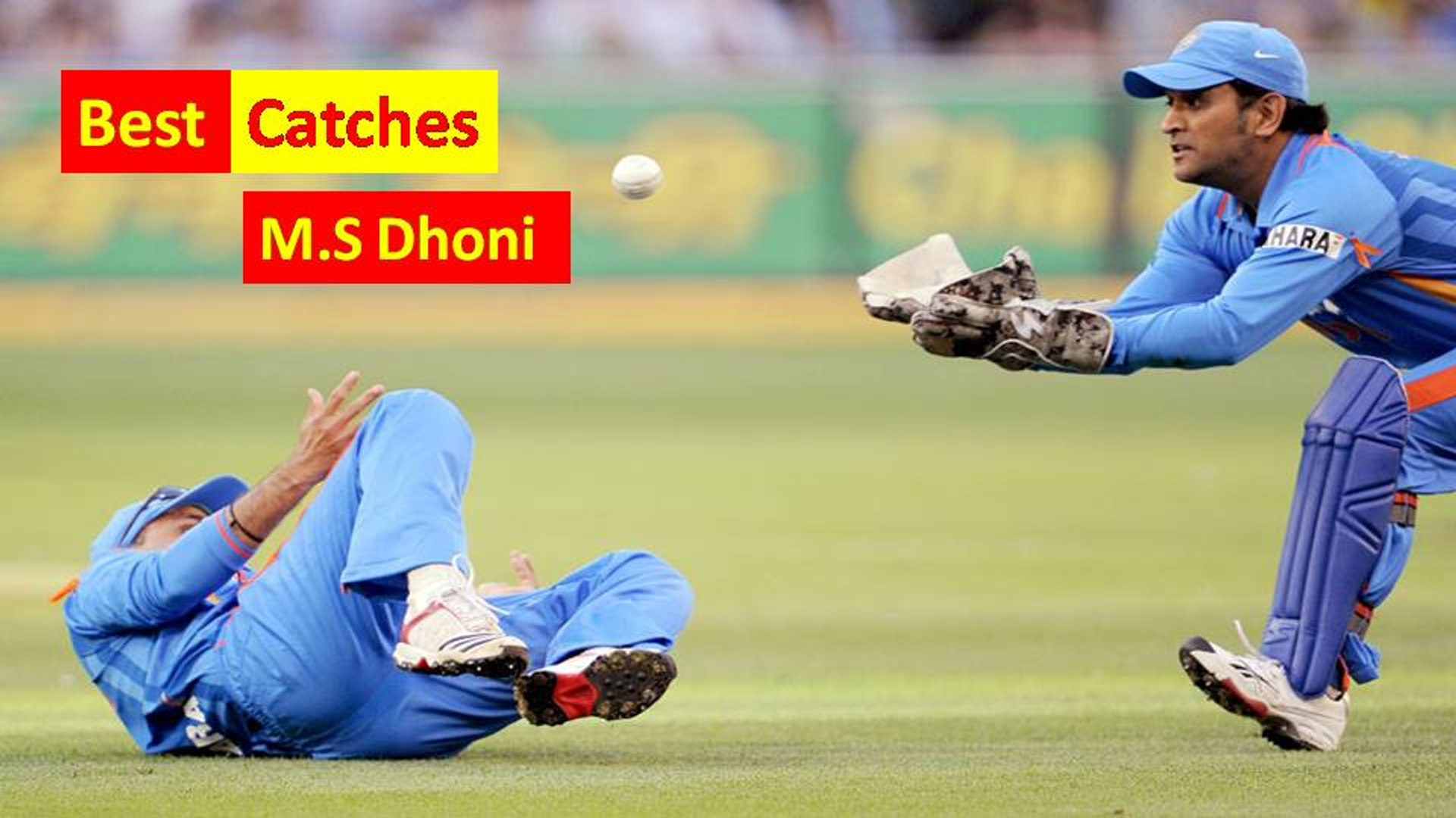 Best Catches by M.S Dhoni || Must watch || All time Best catches by M.S Dhoni