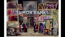 Anne Cambon-Thomsen, UR INSERM-CNRS, Génopole Toulouse Midi-Pyrénées.- IMH_Tumor Banks_03