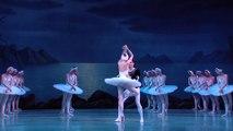 Tchaikovsky - Swan Lake (Maryinski Theatre, Valery Gergiev 2013)_1C