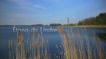 Etang de Lindre, le Parc naturel régional de Lorraine (Tour de France de la biodiversité 4/21)