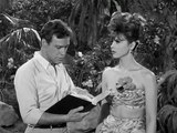 Gilligan's Island - S01E36 A Nose By Any Other Name Internal