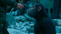 'War for the Planet of the Apes': Reviewers Rave | THR News
