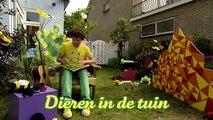 Dirk Scheele Dieren in de tuin Huis, tuin en keukenavonturen