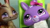 Bébés bébé frère lapin maman film Nouveau partie animal de compagnie séries Boutique Lps mamans 40 littlest lps