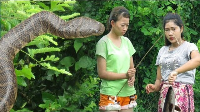 Two beautiful girls see Big Snake while she Makes Hook Fishing