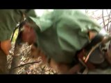 [MP4 480p] Lioness helps tigress to raise cubs