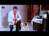 Tommy Telugu Movie Theatrical Trailer    Rajendra Prasad, Suresh, Chakri