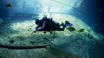 ScubaLab Testers Choice: Mares Bolt SLS Scuba Diving BC