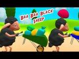 ★2 HOURS★ Baa Baa Black Sheep Rhyme ||  Monkeys Version || Children Rhymes || 3D Animation Rhymes