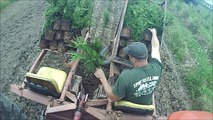 == Fast way to plant Trees    Using a   Princeton Tree Planter++