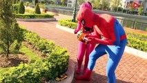 Bagger, Lastwagen, Spiderman und Freunde   Bagger kinderfilm video mit spielzeugautos   AbcKinder
