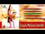 Sree Saila Mallanna Devotional Album -Maha Shivaratri Pooja Songs