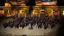 Un chien perturbe un orchestre de musique classique et provoque les rires du public !