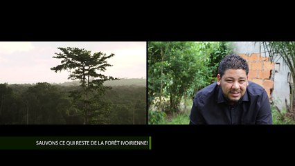 L'INSTANT ECOLO AVEC OUALAS - Sauvons ce qui reste de la forêt ivoirienne
