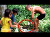 How to dig cricket insect in Battambang - Finding cricket insect in the hole by Digging