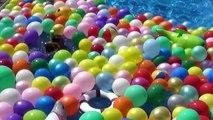 1 000 ballon des ballons bats toi enfants le plus grand fête piscine eau mondes 1000 pop