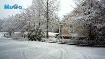 Antonio Vivaldi - The Winter (Four Seasons Classical - Dört Mevsim Kış HD) Mu©o