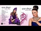 Ayşe Dincer  - 10 Tokat Sallanıyor 2013 Yeni Albüm
