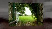 Guinea Plantation Barbados - For Weddings, Parties & Events
