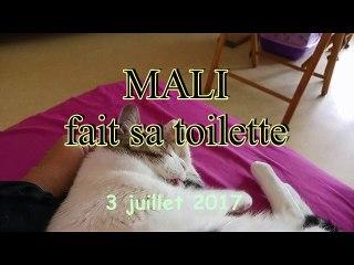 Mali fait sa toilette