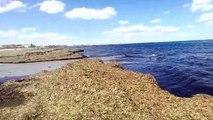 Playas de España- Murcia-Playa de el Mojón-San Pedro del Pinatar