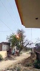 Un arbre s'électrocute sur des câbles électriques