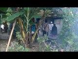62 Warga di Bondowoso Terserang Penyakit Chikungunya - IMS