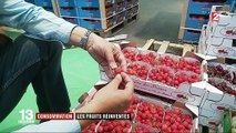 Raisins sans pépins et fraises blanches, le marché du fruit se modernise