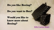 Boxing; why people Box, why boxers prefer boxing.