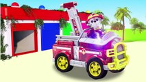 Patte patrouille les meilleures bébé jouet apprentissage les couleurs vidéo en bois jouets des voitures pour enfants enseigner les tout-petits