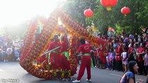 À voiture Chinois ré danse gratuit attraction de dragon danse du lion dragon |