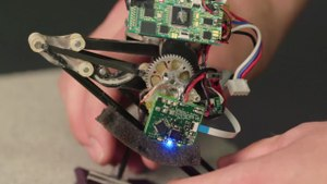 Meet Salto, the Tiny Robot With a Giant Leap
