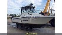 Seaswirl Boats Striper 2301 WA EFB...
