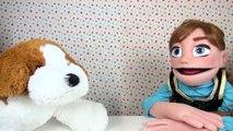 Petite Anna Princesse de la Reine des neiges Et Patapou le chien ! Histoire pour enfant en
