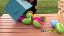 Animaux Chocolat Oeuf chasse serviteur de plein air parc Princesse jouet Trésor contre t Olaf Sarafi