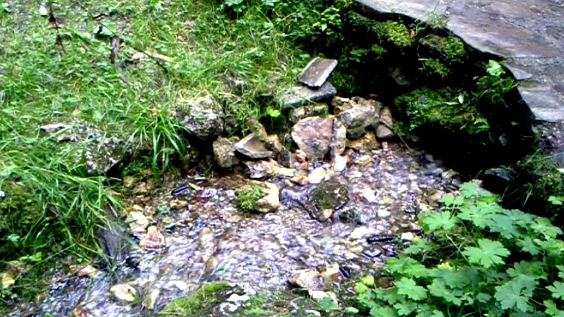 KAD JA POĐOH NA BEMBAŠU ~ Bosnian Sevdalinka & Natural Spring Water Sounds