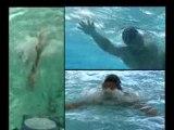 Swimform : Talents des Cités