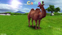 Apprendre sauvage animaux des noms et des sons animaux les dessins animés pour enfants par animaux rimes