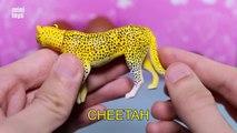 Toy Wild Animals 3D Puzzles Collection Zebra Hippo Giraffe Cheetah │ Zoo Animals Fun Fs