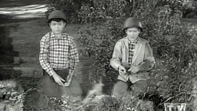 Leave It To Beaver S04E19 Beaver's Old Buddy